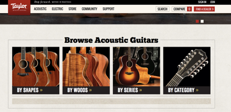 A study of guitar branding and the musical market - Stealing